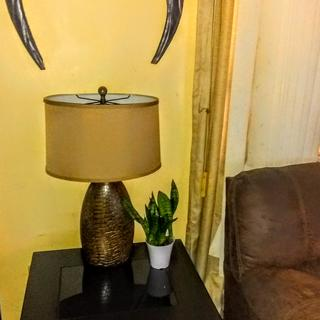 I ordered the Melvin Table lamps,  the delivery was quick, and great quality. I'm happy!