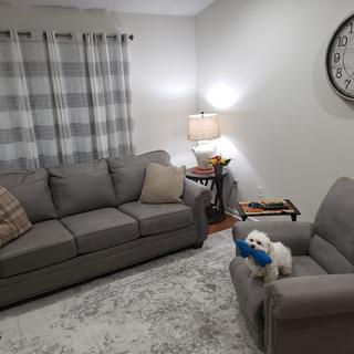 Sofa, Recliner, 2 end tables, 2 lamps, 1 spoiled pup :)