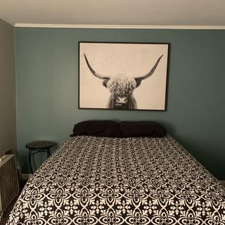 Small room. Didn't want a headboard. Perfect!!