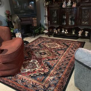 I LOVE my rug and how it makes my furniture POP! So plush and great quality!!