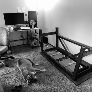 Easy assembly by myself. Puppers not disturbed at any point, huge upgrade compared to other desk.