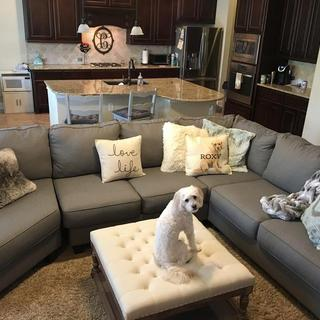 Our new Chamberly sectional with cuddler