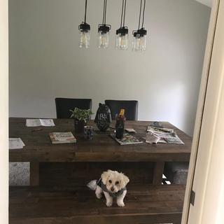 Charlie likes it too.