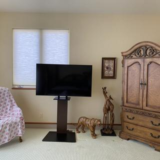 "Floor stand with 55""TV"