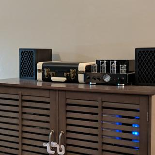 We love these retro speakers! They sound great on our MP hybrid tube stereo.
