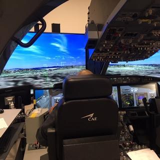 CAE 737 Simulator