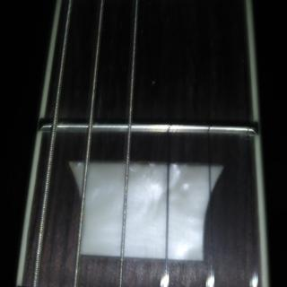 Perfect, very nice Inlays.  Finished frets,  All level and no sharp ones.  No sprout