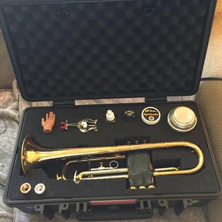 Love it! Fits my trumpet, mute and misc supplies.