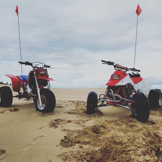 Sand stars front and rear on the trx250r