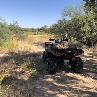 Arizona trails.