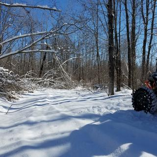 """Winter riding in Outing, MN on 2/25/17.  30"""" Carnivores did great in the 6-7"""" of snow!"""