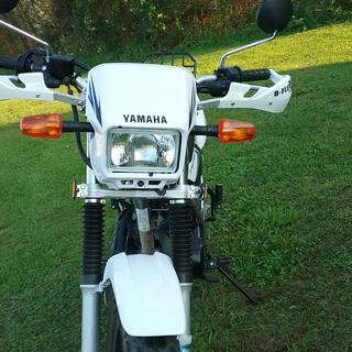 Tw200 with Tusk D-Flex handguards