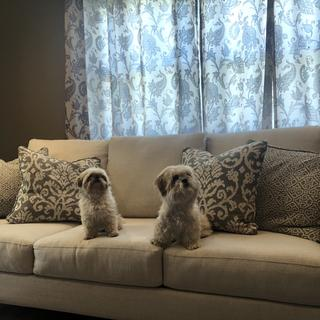 The sofa is beautiful and comfortable!  Even my pups love it!
