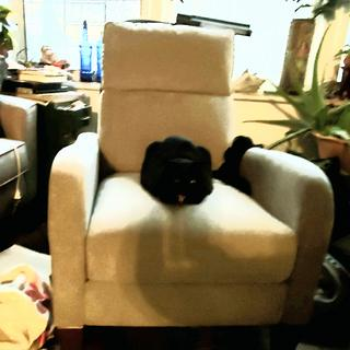 We are not the only ones who find this chair comfortable.