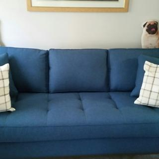 I love our new couch! It is so pretty and I am ordering the loveseat also.