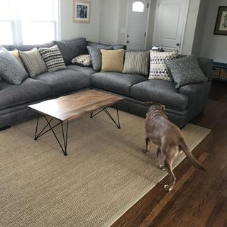 Comfy, spacious sectional great value