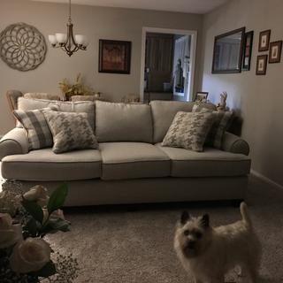 My beautiful Shiloh sofa!