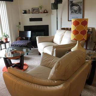 Perfect in our midcentury living room!