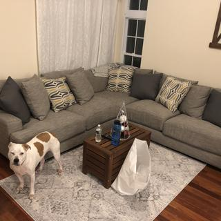 love this couch! it is so comphy and cozy in our new home!!!!  (please excuse the mess and the dog)