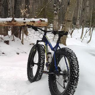 Gravity Dropper on Norco Sasquatch