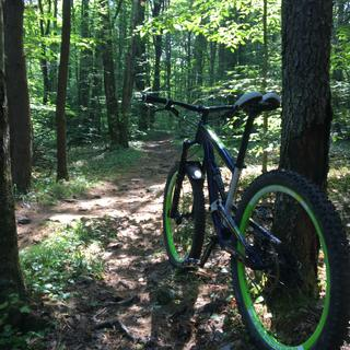 more singletracks at elm ridge