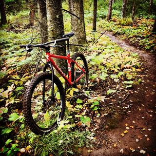 Kenda Nevegal's on Voodoo Hoodoo 1x10 with Surly 1x1 rigid fork.