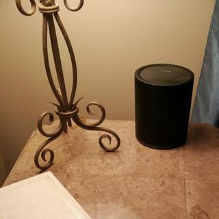 Small speaker blends in nicely.