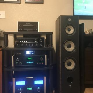 Great combination, McIntosh detailed sound & powerful output, paired with Focal finesse!