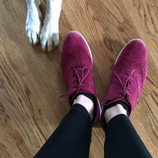 My dog thought they were cute too ;)