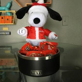 Snoopy loves his Yeti dog bowl!