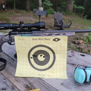 Absolutely love this gun! Put a buscnell dusk to dawn on it ver accurate at 100 yards
