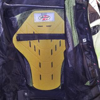 Forcefield Isolator 2 is a perfect fit for substitute back protector