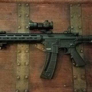 Smith & Wesson M&P 15-22 Sport  22 LR 16 5