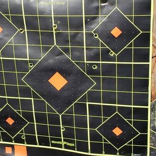 at 80 yards with irong sights