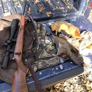 My first squirrel hunt with my CZ 455 American 22lr.