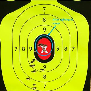 50 yards using range bag as a rest with 150 Grain FMJ by Prvi Partizan.