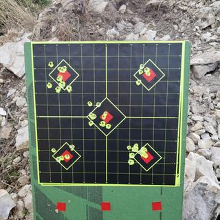 85 yds  CZ 455 Lux (Nikon scope)