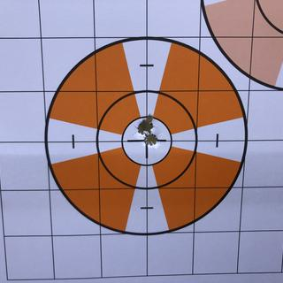 3 shots 200 yards. With Hornady Precision hunter 143 he ELD-X. Sighting in Rifle