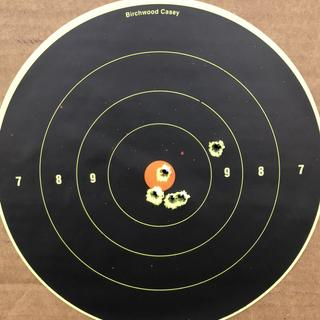 Grouping at 150 yards on a ten inch target.