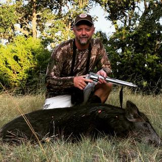 Texas hog