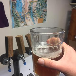 brew at week 5 - less haze