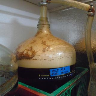 This is 24 hours after pitching a 2000ml starter of White Labs London Ale Yeast.