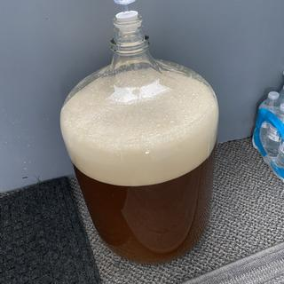 Fermentation started quickly