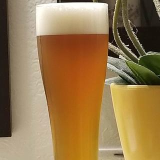 Blood Orange Pale Ale