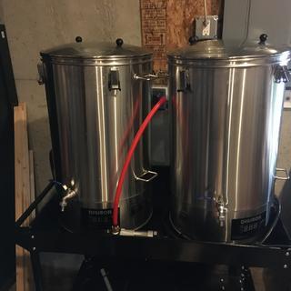 Dual brew system