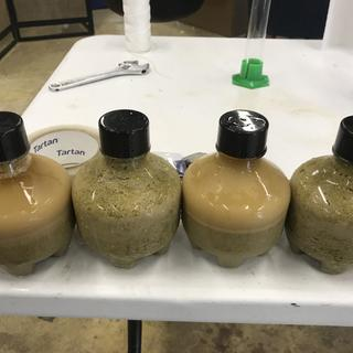 Yeast collection