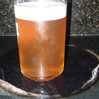 Citra Pale Ale using Pale Ale and Xtra Pale Malt.