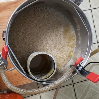 During boil and hops addition.