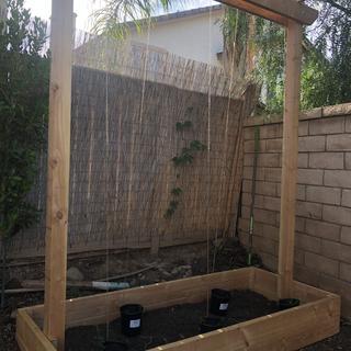 Built shop trellis for hop vines