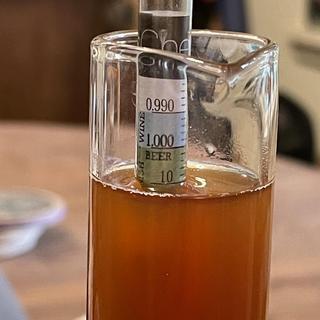 Beautiful dark amber color warm malty fresh flavor